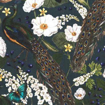 Tissu velours paon et papillon multicolore