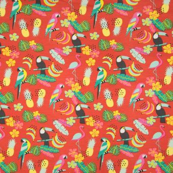 Tissu jersey de coton coloris brique motifs perroquets