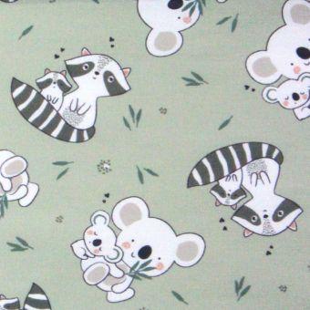 Tissu cretonne coton koalas et ratons laveurs - vert
