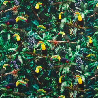 Tissu jersey de coton toucan multicolore